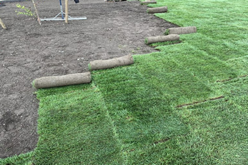 Garden Lawn Turf laid by Landscape Zoolutions.