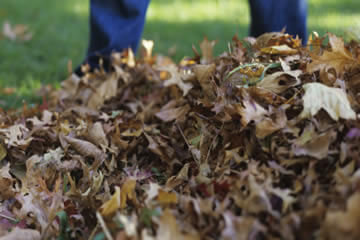 Your Garden Waste and Rubbish recyled by Landscape Zoolutions.